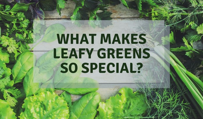 leafy greens on keto diet